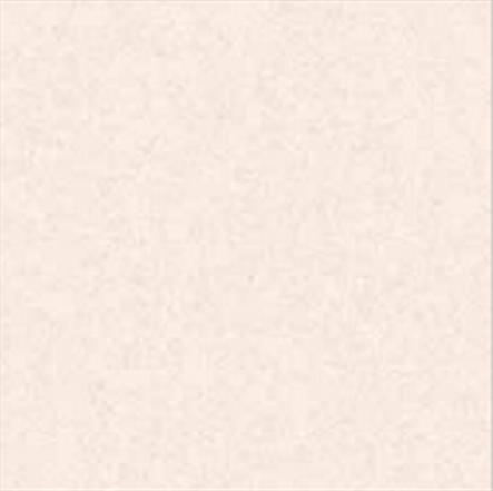Gạch Bạch Mã H4501