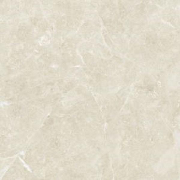 Gạch Granite 60x60 ĐỒNG TÂM - 6060TRUONGSON005-FP